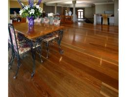 Spotted Gum Select Solid Timber Flooring